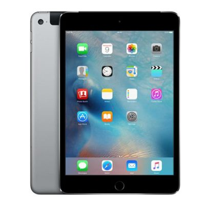iPad mini 4 (space gray)